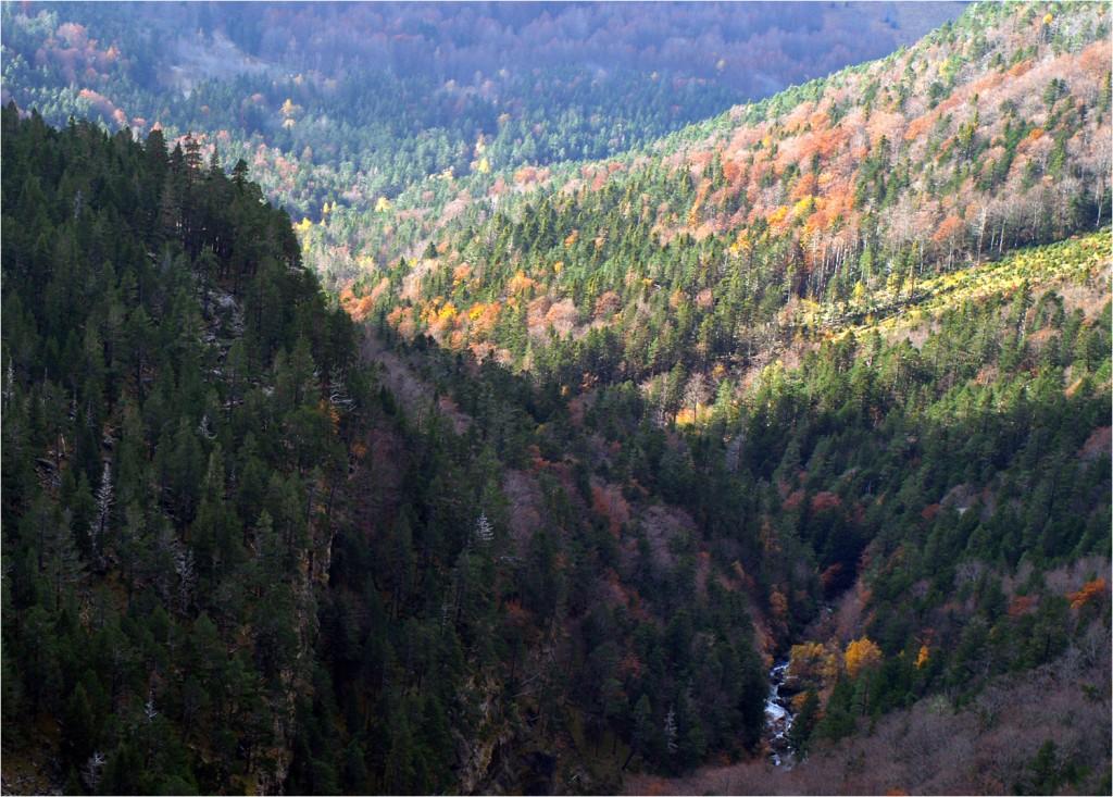 Blick ins Tal von unterwegs