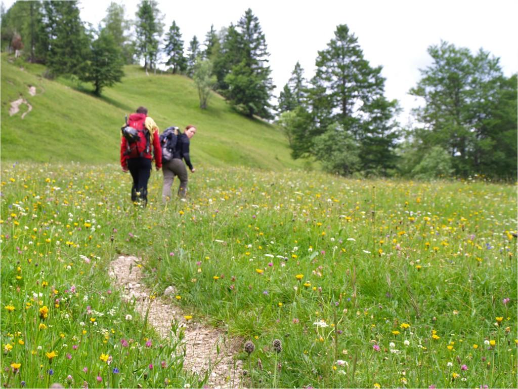 Start am Ferchensee - hier noch recht sommerlich