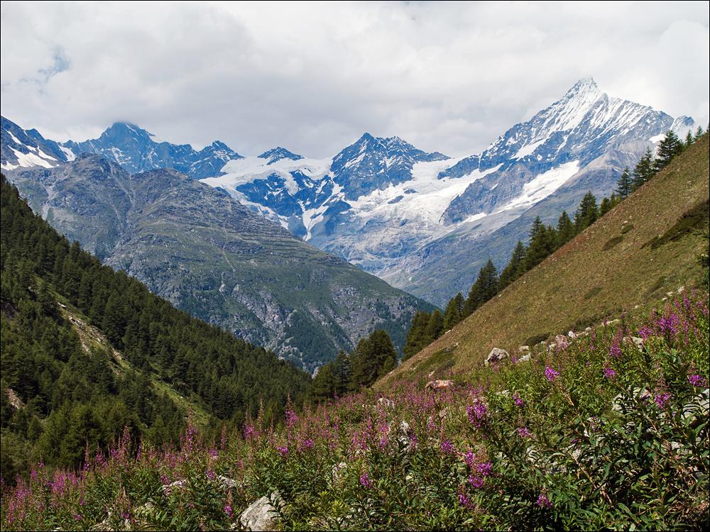 oberhalb von Täsch, rechts das Weißhorn